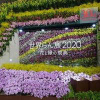 「世界らん展2020」/東京ドーム