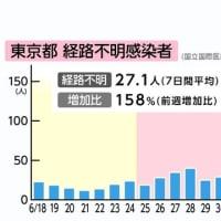 小池東京都知事が「夜の街」を血祭りにあげている間に感染経路不明者が拡大。知事選ファーストの小池氏に鉄槌を。
