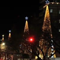 大学通りの夜景は美しいけど・・・・。