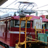 EF81北斗星色機関車