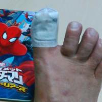 スパイダーマン に なれなかった日 ・・・・・!!     № 7,256