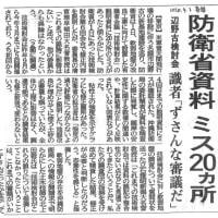 形骸化した辺野古・技術検討会の実態を示した「ミス20か所」 /// 今日(2日・木)は、辺野古・本部塩川港・安和桟橋へ