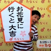 ☆ 2019 ☆ 3/ 25 ~ 3/31  の 開運たなくじ