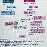 多嚢胞性卵巣症候群(PCOS)