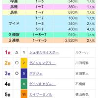 【レース回顧】毎日王冠