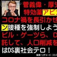 フライヤー:菅義偉・厚労省一味は、特効薬アビガンを封印してコロナ禍を長引かせ、毒性ワクチン接種を強制しようと企んでいる。