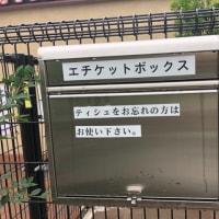 宝塚北SAのドッグラン♪