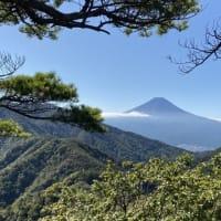 年金凍結が欧米では常、日本は?