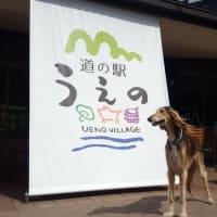 群馬県上野村の「道の駅うえの」