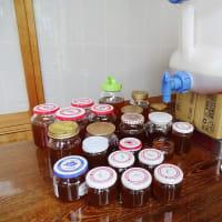 ♪日本ミツバチ 採蜜その後♪