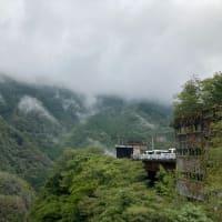 八千代橋から見た「箱根 自然薯の森 山薬」の景色