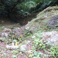 沖縄戦慰霊の日