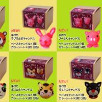 【新発売】 6種類の「手作りキャンドルキット」発売開始♪