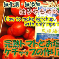 完熟トマトとお塩だけで作るケチャップの作り方(全編)