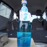 夏酒(日本酒) イルカ