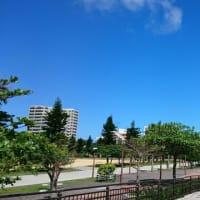沖縄は、すごい青空です。