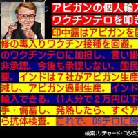 フライヤー:アビガンの個人輸入で菅一味・厚労省のワクチンテロを叩き潰そう!!