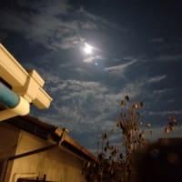 満月🌕ビーバームーンと不思議な青い光