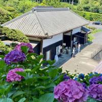 服部農園紫陽花屋敷