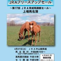 【JRA日高育成牧場 育成馬展示会】が開催