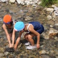 暑い夏は、川遊び最高~