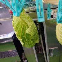 JAとぴあ浜松 湖北地区で干し野菜講座