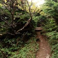 八幡平〜黒谷地〜茶臼口 9/19