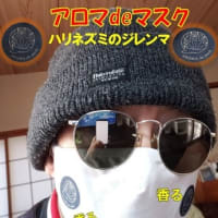 マスクは顔の一部です 不織布カラーマスク 7枚入×4色』モニター募集