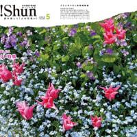 月刊Oh!shun5月号発行🍀