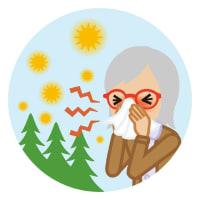 【秋の花粉ですね】