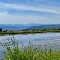 八ヶ岳田舎暮らしのススメ!生涯の記憶に残るゴールデンウィーク