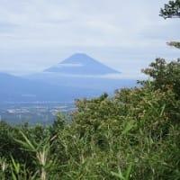 箱根玄岳と山田川自然の里