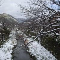 【雑】今日は朝から雪(12/31)