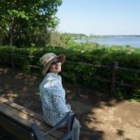 わたしの日常~~  ソクラテス教室で と   公園でのアーシング。写真5枚。