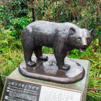 野毛山動物園 FILE:9 コンドル舎、クマ舎