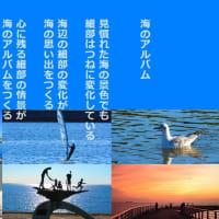 海のアルバム