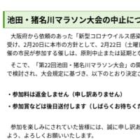 リウマチ闘病記(2/22)