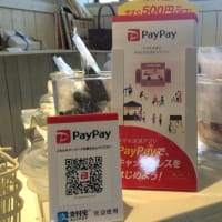 Pay Pay導入♪