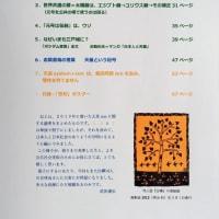 『明治政府がつくった天皇という記号』武田康弘著が完成しました。発売日は2月23日です。先行予約をお受けします。