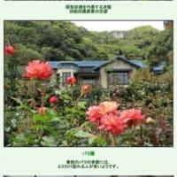 ■【カシャリ! 映像で見るひとり旅】 神奈川県鎌倉文学館 昭和の建築物とバラ園
