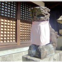 話題の笑う狛犬シリーズ(^^♪自信満々の笑顔の高槻 「冠須賀神社の笑う狛犬」
