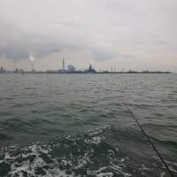 2020年、シルバーウィーク中の湾フグ釣り(2020年9月21日)