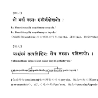 【SHV02】極微文献学入門B、または「梵語マスターへの道」(改組修訂版)の方へ(金沢 篤)