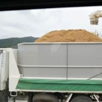 籾の運搬ダンプ山盛り