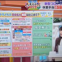 HBC北海道放送『今日ドキッ!』に生出演しました!