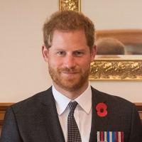 英ヘンリー王子、今春に公務引退公費や敬称辞退