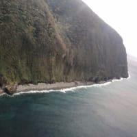御蔵島のガイド講習