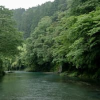 早瀬の一本橋【高知県津野町】