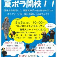 夏のボランティア体験プログラムを開催します!