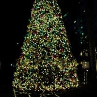 語学留学でセブに行く19 長い長いクリスマス